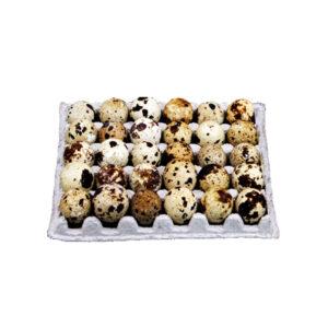 quail-eggs-30pcs